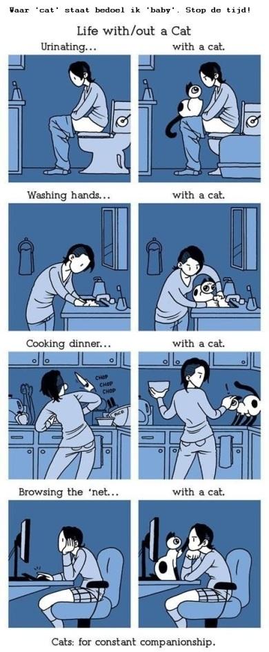 Life with cats met tekst